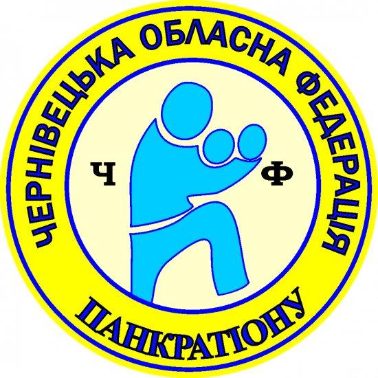 Спортсмени Кіцманщини виступили на чемпіонаті з панкратіону в Чернівцях