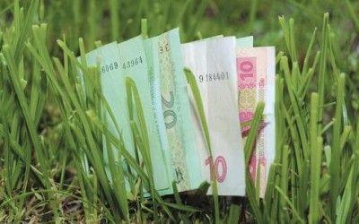 Як визначити правильність нарахування плати за землю