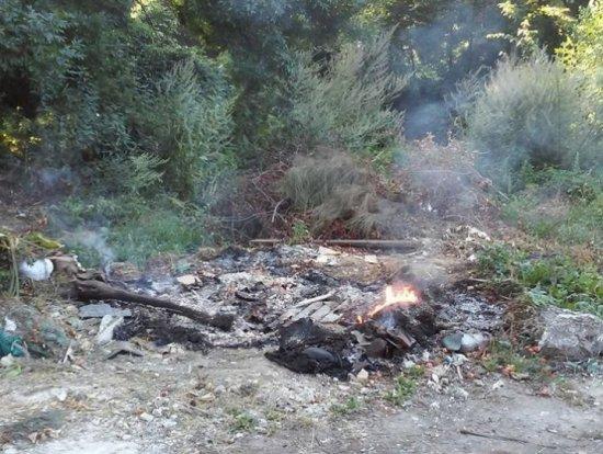 Сміття і суху траву продовжують спалювати, бо ніхто не штрафує порушників