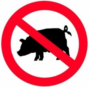 Є привід для занепокоєння:  африканська чума  свиней вже поряд