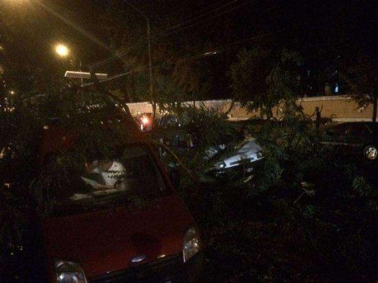 Недільна негода на Буковині: пошкоджені лінії електропередач, дахи і повалені дерева