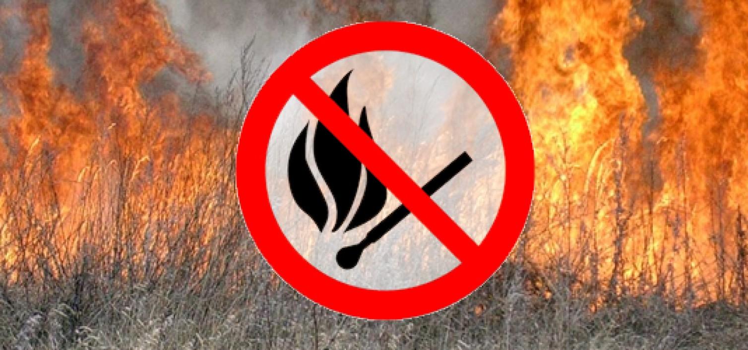 "Результат пошуку зображень за запитом ""не спалювати суху траву"""