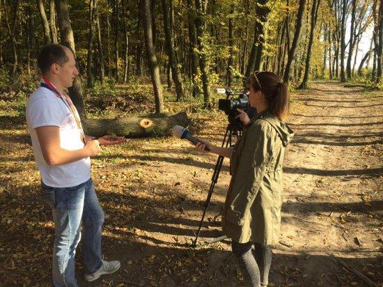 Про вирубку дубів у Кіцманському лісі показали сюжет та телеканалі