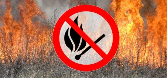 Спалювання сухої трави заборонене і небезпечне