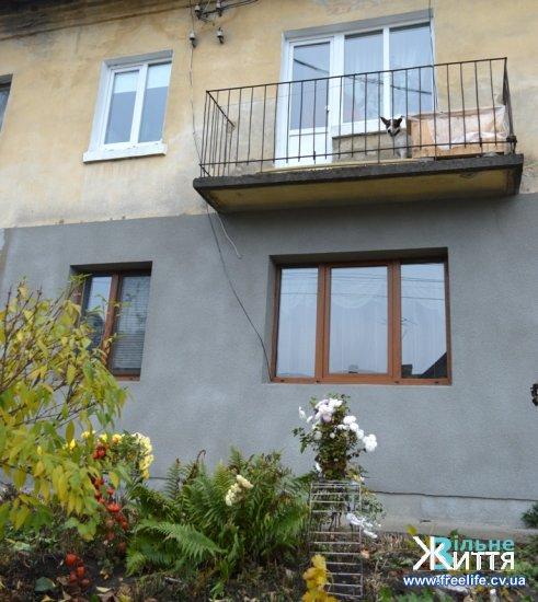 Собачка з італійською кличкою Кодіна живе на балконі у Кіцмані