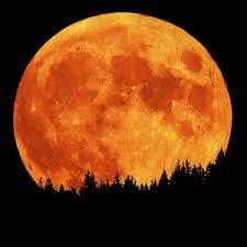 В ніч на 4 грудня українці зможуть спостерігати надзвичайно великий Місяць