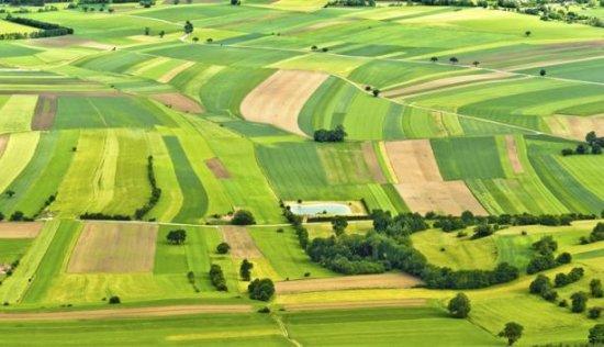 Уряд передає об'єднаним громадам у власність землі за межами населених пунктів