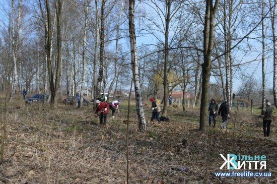 Весняна толока розпочалася із благоустрою кіцманського міського парку та території довкола кінотеатру ім.І.Миколайчука