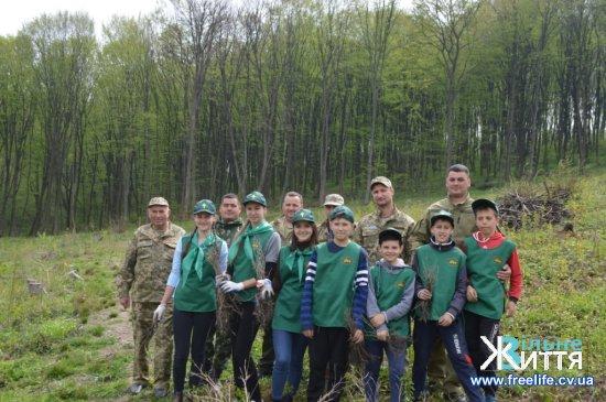 У Чорториї у Станівецькому лісництві висадили понад 4,5 тисячі дубів
