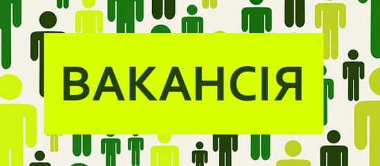 Оголошується конкурс на заміщення вакантної посади директора комунального закладу «Кіцманський інклюзивно-ресурсний центр»