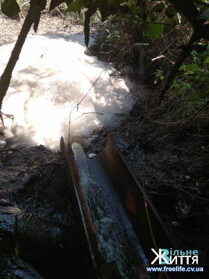 Річку Совиця забруднено через наднормативні скиди зворотніх вод — висновки екологів