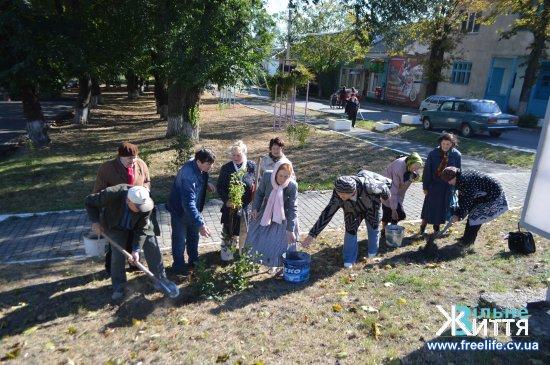 У міському сквері Кіцманя посадили квітучі кущі