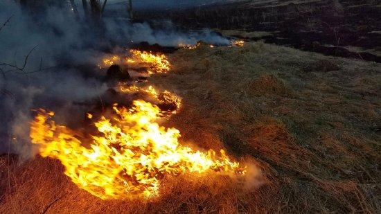 Знову хтось підпалив суху траву: 8 березня горіло в Суховерхові і в Ошихлібах