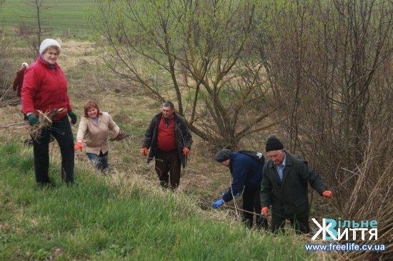 Весняна толока на Кіцманщині триває